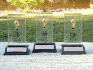 3 Golden Chile Awards
